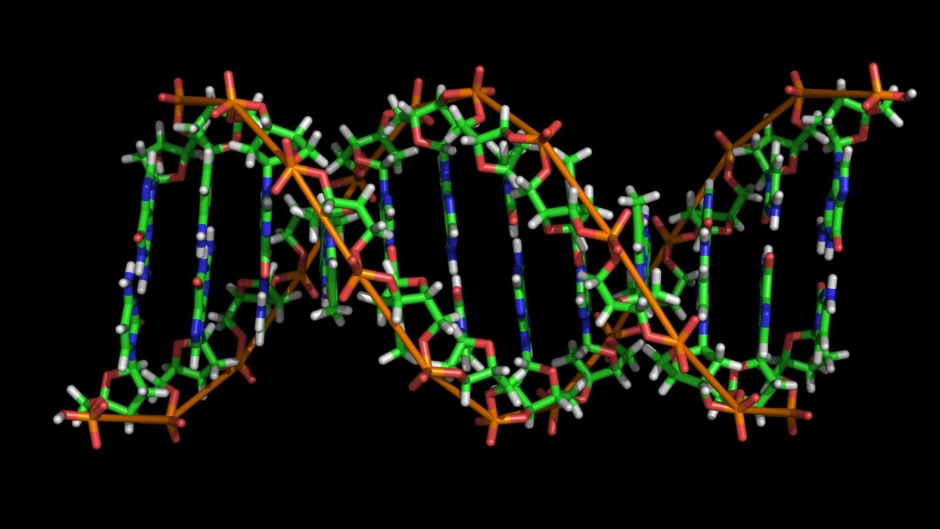 CRISPR – Cas9: glimpse into the future of gene editing and oncology therapy