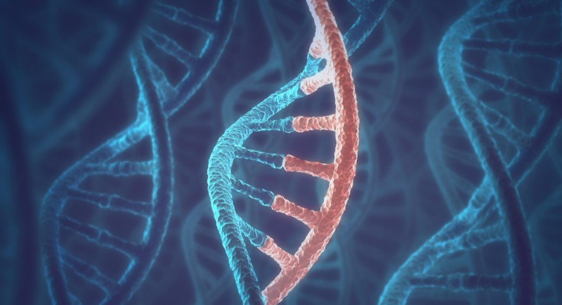 MicroRNAs and cancer